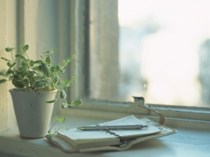 window-flower-plant-notebook-diary-notepad-pen-reflection-light-day